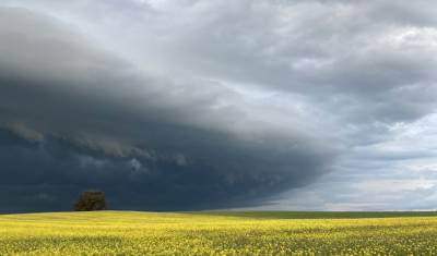 Amazing storms over Walla : Welcome Back for Term 4